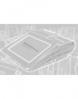 Parallel Interface for ZX1200i series